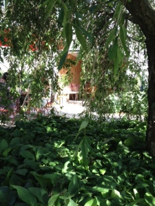 Shady nook at Croteaux.