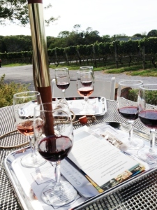 Some red tastings plus a view of the vineyard at Pellegrini.