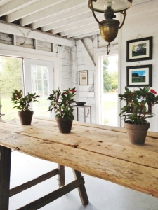 The attractively rustic tasting room