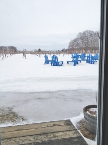 The vines enjoy their blanket of snow.