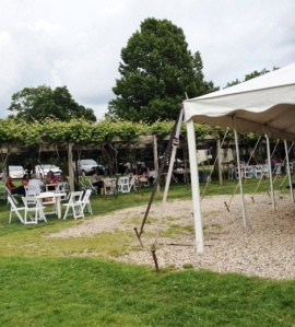 One view of the tent and the pergola.