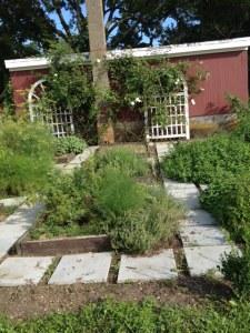 The herb garden near the tasting patio.