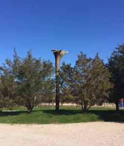 Outside the tasting room you are greeted by this statue made by Mr. Channing from a tree turned upside down.